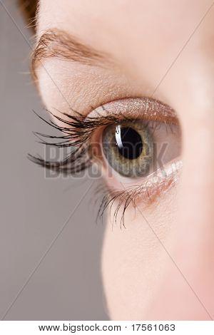 beautiful female open grey eye