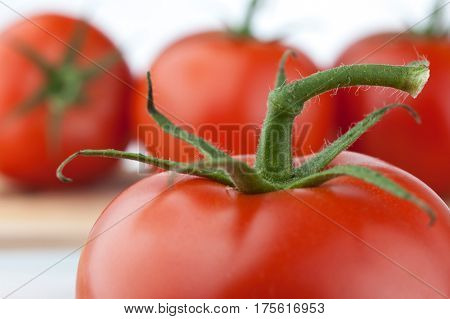 Extreme close-up image of fresh tomato stem
