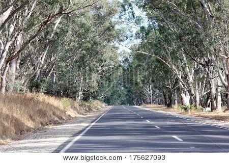 Country Road, Victoria, Australia