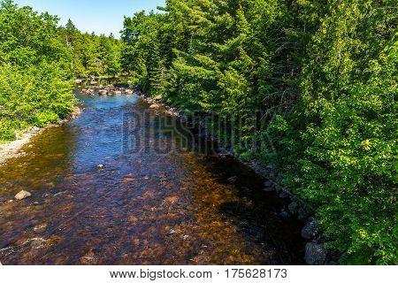 The Machias River
