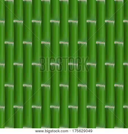 Seamless background. Texture of a set of green bamboo stalk vector illustration.