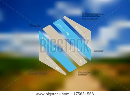 Illustration infographic template with motif of hexagon askew divided to five blue and grey standalone sections. Blurred photo with natural motif landscape with cloudy sky is used as background.