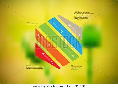 Illustration infographic template with motif of hexagon askew divided to five color standalone sections. Blurred photo with natural motif of green poppy plants is used as background.