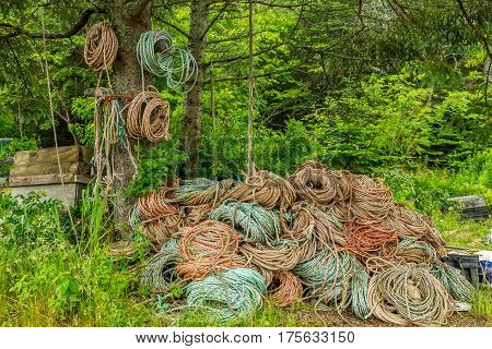 Rope For Lobster Traps
