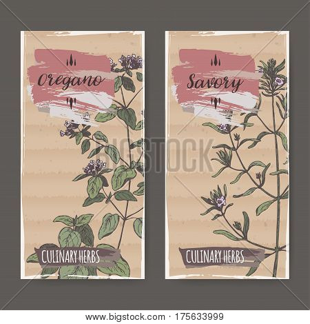 Two color labels with oregano and savory sketch. Culinary herbs collection. Great for cooking, medical, gardening design.