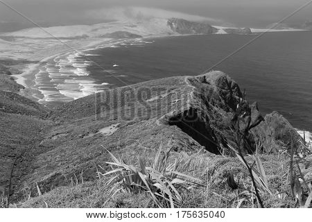 Misty view from cliffs and coastline Cape Reinga in monochrome Northland New Zealand. It owned and operated by Maritime New Zealand