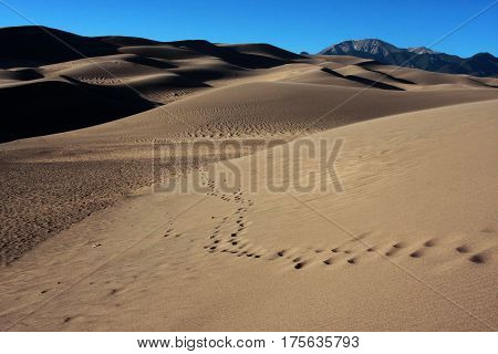 Footsteps wind across the sands of the Great Sand Dunes National Park in southern Colorado near Alamosa.