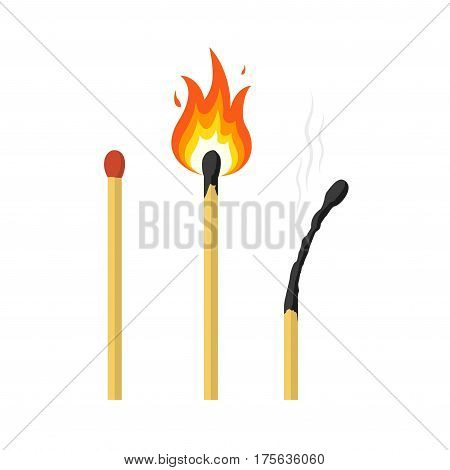 Matches lighted match and burned match. Vector illustration.
