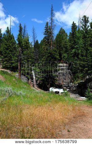 Trail Approaching Lake Creek Falls