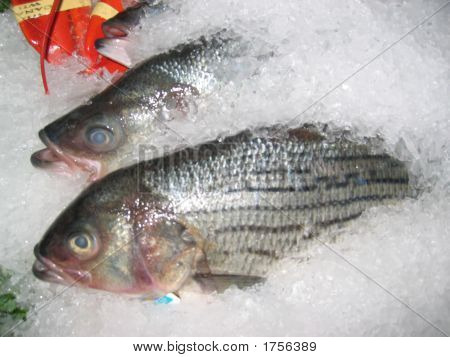 Fish on ice at a fish market poster