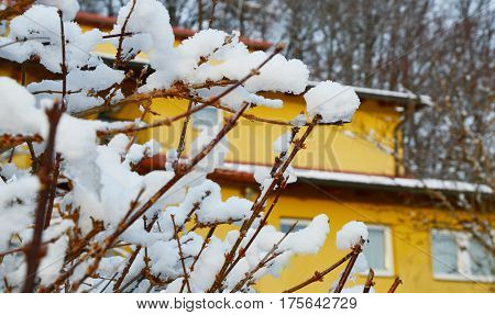 winter season with snow and home on the Mountain