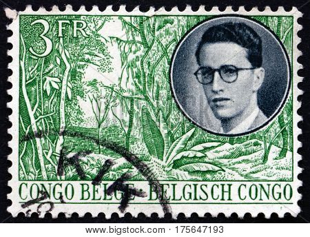 BELGIAN CONGO - CIRCA 1955: a stamp printed in Belgian Congo shows King and view of forest circa 1942