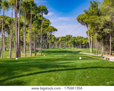 Photo of Golf course in the countryside