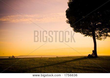Girl_Under_Tree_2