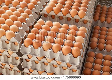 A pile of Chicken eggs in paper trays