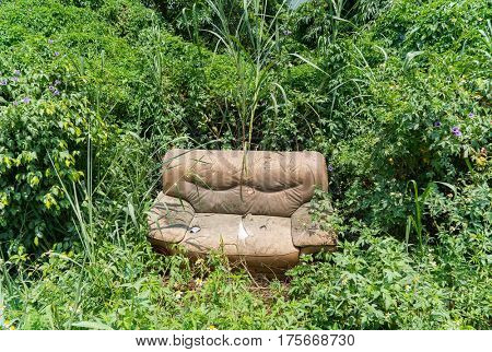 sofa abandoned in the grass .
