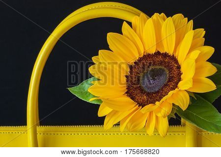 Close-up handles of bright handbag from genuine leather, decorated flower, sunflower. For background, backdrop, substrate, use of composition. Concept of shopping, manufacturing, lifestyle, summer weekend