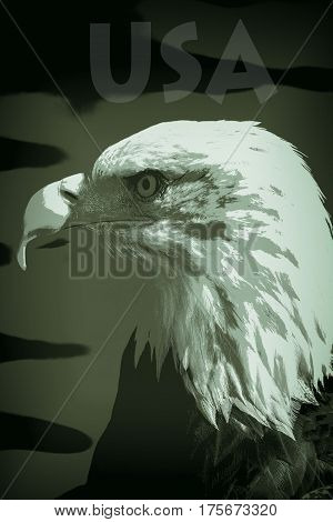 USA bald eagle as a posterized image in military camouflage colors representing might and supremacy