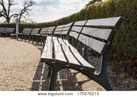 Empty Bench Row Bushes Sky Park Open Skies Blue Sunny Day Beautiful Weather European Tourist Location