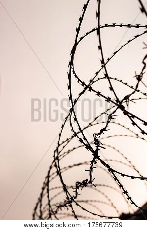 Barb wire in jail. Captivity and freedom concept. Background