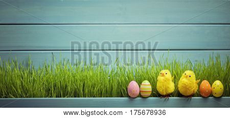 Easter eggs,chick and green grass on wooden background