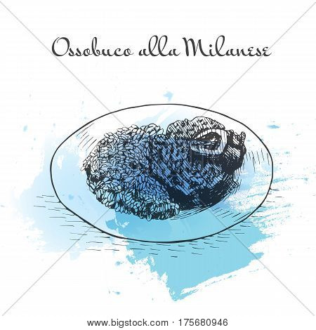 Ossobuco alla Milanese watercolor effect illustration. Vector illustration of Italian cuisine.