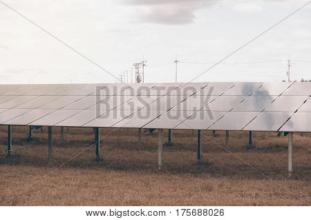 Solar panels (solar cell) in solar farm with sun lighting to create the clean electric power.