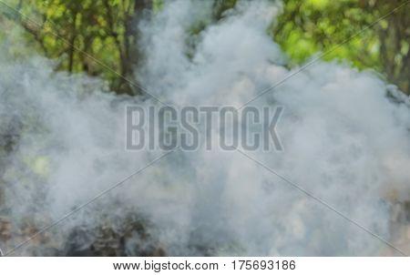 Smoke and Fog on the river .