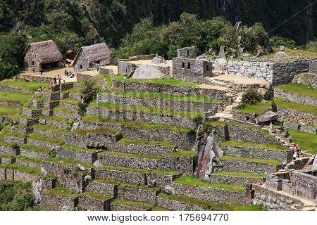 Agricultural Stone Terraces At  Machu Picchu In Peru