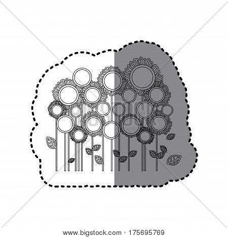 grayscale sticker with sunflowers field vector illustration