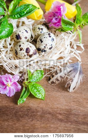 Easter Composition of Easter quail eggs in the nest with spring flowers and foliage on the wooden background. Soft focus.
