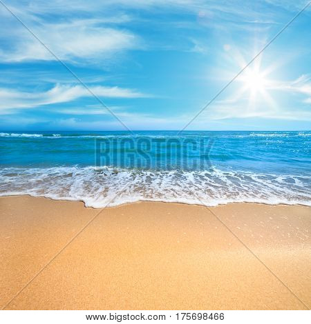 Paradise Sea or Ocean Sunny Beach with gentle  surf of wave and clean yellow sand - Summer concept background