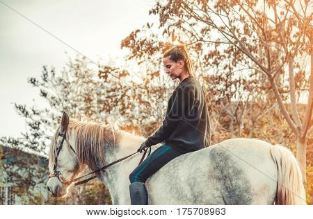 Young beautiful brunette girl rides a horse bareback with hackamore. Warm and sunny autumn day. Portrait of a pretty young woman on the horse, wearing tall boots and gloves.