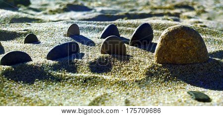 A composition made by stones in the sand