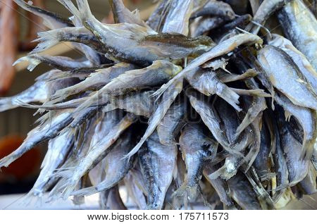 The Bundle of sun-dried fish at fish shop in Samara