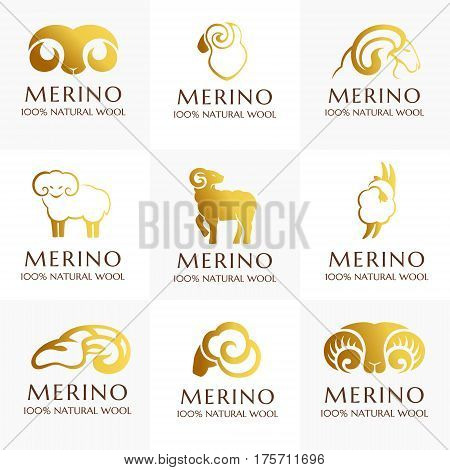 Merino wool icons set. Vector sheep logo template. 100% natural product isolated symbol
