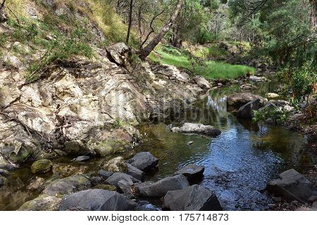 creek with running water and rocks through bush lands in fall late afternoon sun
