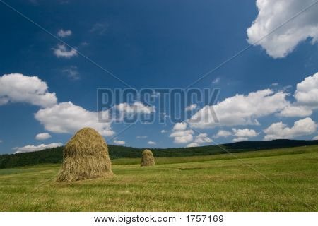 Two haycocks on the meadow and blue sky poster