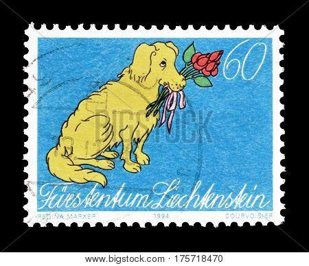 LIECHTENSTEIN - CIRCA 1951 : Cancelled postage stamp printed by Liechtenstein, that shows Dog holding flowers.
