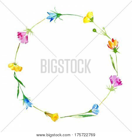 Wreath of a bluebell, grass, tansy and floral. Garland of a meadow herbs.Watercolor hand drawn illustration.
