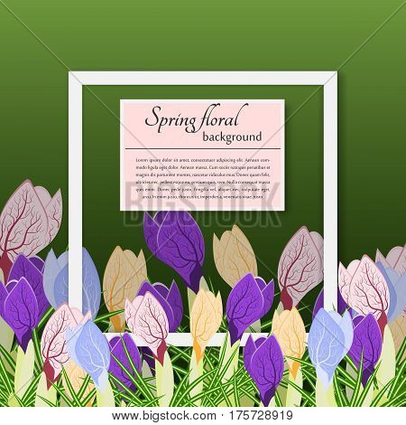 Spring crocuses and the simple text on a green background. For use as logos on cards in printing posters invitations web design and other purposes.