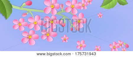Banner With A Branch Of Cherry Blossoms With Paper Cut. Paper Art Style.leaves And Flowers On A Blue