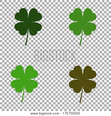 Four leaf clover. Set of isolated leaf clover