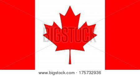 Canada vector flag. Official Canada vector flag