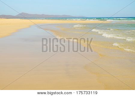 View on the famous beach Sotavento on the Canary Island Spain.