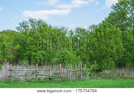 Old wooden fence on the edge of the deciduous forest in middle of spring