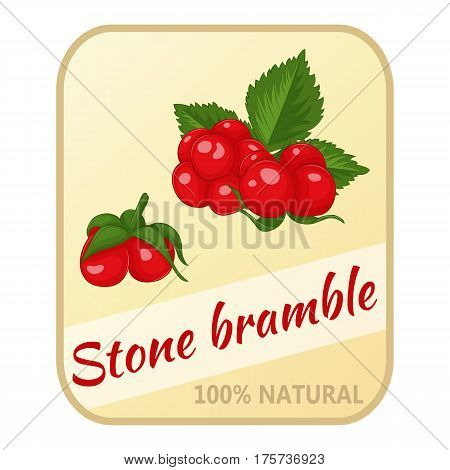Vintage label with stone bramble isolated on white background in simple cartoon style. Vector illustration. Berries Collection.