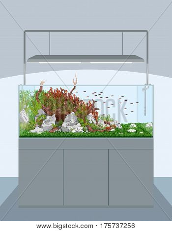 Natural aquarium with fish and plants on cabinet - aquascape
