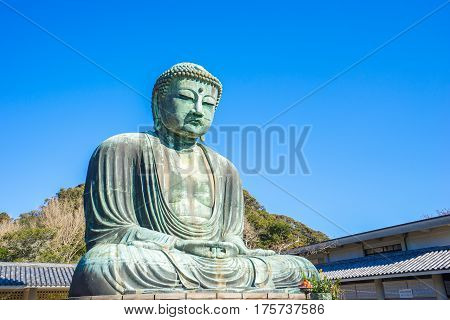 The Daibutsu Giant Buddha in Kamakura Japan.