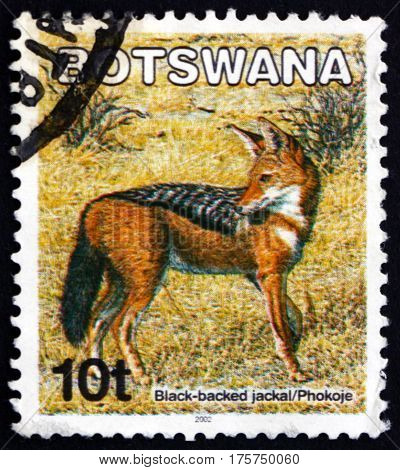 BOTSWANA - CIRCA 2002: a stamp printed in Botswana shows Black-backed jackal canis mesomelas animal circa 2002